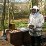 Bienen2020_03.jpg